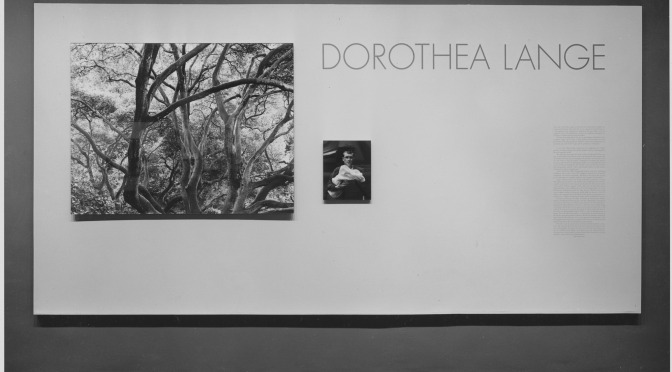 Museum of Modern Art ONLINE Exhibit: Dorothea Lange: Words & Pictures