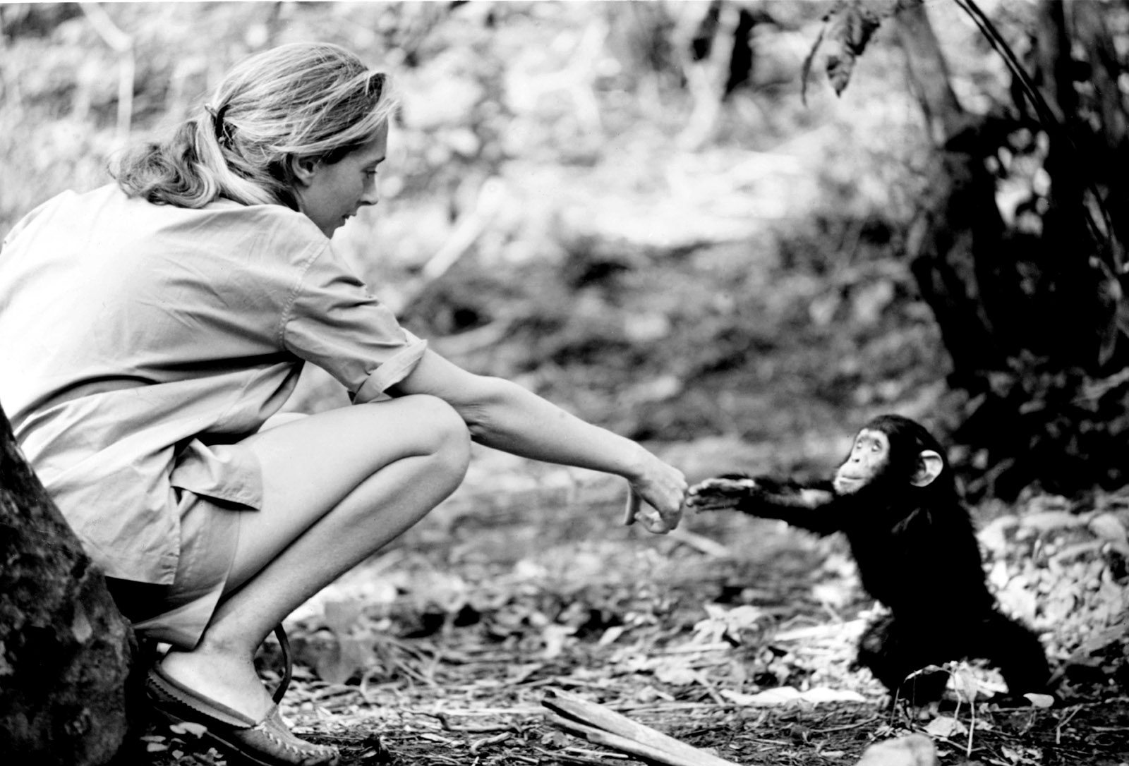 I Was Here.: Jane Goodall